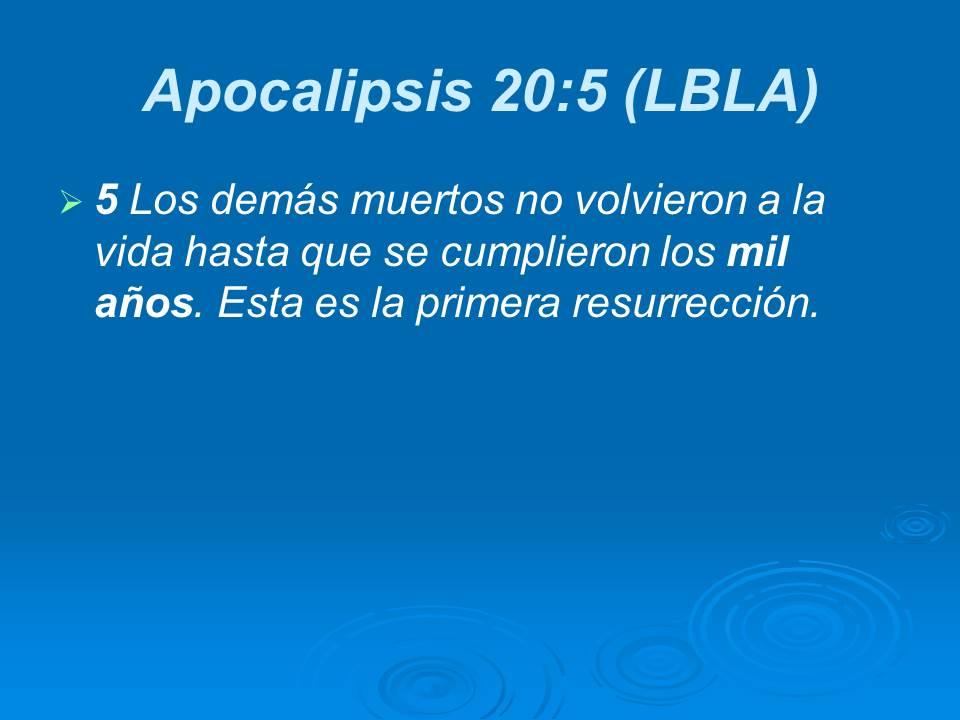 Diapositiva15